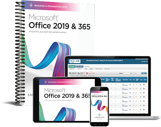 MS Office Professional